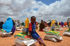A child with newly-received food provisions in drought-hit Puntland (Ummah Welfare Trust) Tags: poverty africa charity food water children hope desert islam aid hunger muslims development humanitarian somalia somaliland developing puntland humanitarianism nugaal awdal