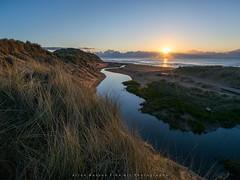 Sunrise over Balmedie Beach (LoneWolfA7ii) Tags: blue sea sky cloud sun seascape colour art beach water grass yellow sunrise outside scotland sony aberdeen coastline seashore balmedie a7ii