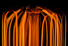 Power - HMM! (Fallen Archer) Tags: orange lightbulb glow power hmm filaments canonef50mmf14usm macromondays canoneos40d startswithp kenko30mmextensiontube vintagestylebulb