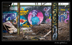 REPI (Le Dieu of Volcanoes) Tags: street streetart france art canon graffiti google europe flickr graf urbanart graff auvergne clermont puydedme clermontferrand repi eos70d