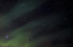 can't stop dreaming of Northern skies (lunaryuna) Tags: nightphotography winter sky green nature beauty norway season stars magic nightsky lunaryuna northernlights auroraborealis starrynight nocturnalphotography northernnorway northernskies arcticregion nordlichter thecolourofcold seasonalwonders winterabovethearcticcircle