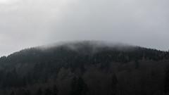 Nebel ber den Bumen (kathy.kerk) Tags: trees mountain berg forrest hill unesco wald bume harz weltkulturerbe goslar bergbau rammelsberg