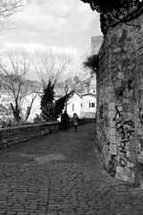 APDic2015_25 (verul1968) Tags: italia colore marche ai ambra merli medioevo centrale ascoli dietro filtro piceno romanticismo