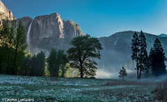 """Foggy Dawn""... (swazileigh/ Langman Lightscapes) Tags: california trees snow mountains tree yosemitefalls beautiful misty sunrise waterfall nationalpark rocks hiking foggy meadow adventure explore yosemite yosemitenationalpark easternsierras"