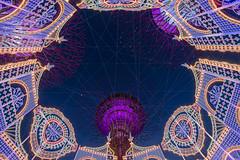 Christmas Wonderland @ Gardens by the Bay #4 (BoXed_FisH) Tags: christmas architecture zeiss marina lights singapore southeastasia sony illumination wideangle bluesky sg lightings gardensbythebay sonyzeiss zeiss1635 sonya7 sel1635z sony1635mmvariotessartfef4zaoss sonyzeiss1635f4oss
