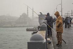 DSC_1653 (zeynepcos) Tags: bridge winter snow man cold fishing fisherman outdoor istanbul mosque galata karakoy eminonu