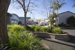 Rangitoto College facilities (Sound Garden)