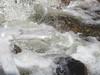 Crystaline-Like Bubbles In Splashing Water In Sabino Canyon-8 <<>> IMG_8775 - Version 2 (Chic Bee) Tags: arizona agua rocks tucson stones bubbles boulders foam naturewalk corriente cascada catalinamountains froth sabinocanyon splashingwater southwesternusa singingwater pequeñacorrientedeagua
