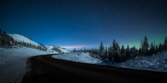 Winter Night II (Sandra Herber) Tags: winter snow canada night stars alberta northernlights auroraborealis