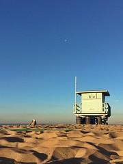 The seagull (da's art) Tags: sky moon beach photo sand seagull lifeguardtower iphone snapseed
