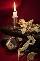 Still Life (Phil Kirchmeier) Tags: red stilllife leaves leather dead fire candle bell poinsettia books flame dried cloth brass brassbell