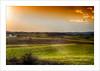 Tarde de invierno (miguelangelortega) Tags: winter sunset planta landscape atardecer nikon village pueblo cereal paisaje colores cielo invierno puestadesol hdr tarde trigo tierra hierba cultivo 1755 airelibre cebada barbecho ltytr1 campodecultivo d7100 tierradelabor