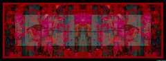 Symmetry (Robin Penrose) Tags: symmetry awardtree theawardtree 201509 kreativepeople thestickybeakawards
