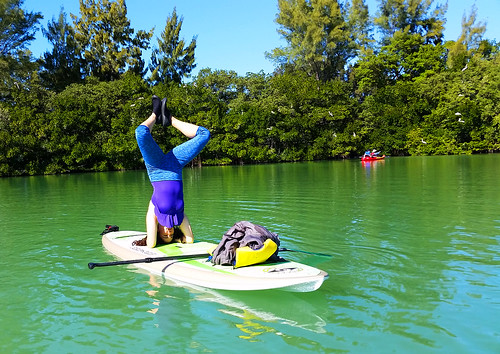 2_10_16 Kayak Paddleboard Tour Sarasota FL 21