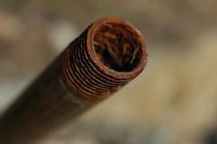 ferraille (bulbocode909) Tags: tubes fer rouille ferrailles