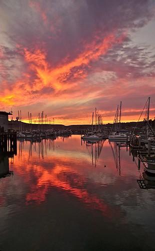 Pillar Point Harbor Sunset