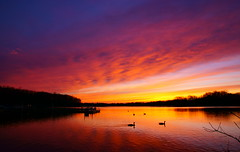 The change of colors (TEO DE THUONG) Tags: cloud lake nature water colors landscape duck outdoor dusk ngc explore soe twop simplysuperb artofimages