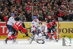 "DEL16 Kölner Haie vs. Adler Mannheim 24.01.2016 076.jpg • <a style=""font-size:0.8em;"" href=""http://www.flickr.com/photos/64442770@N03/24911329726/"" target=""_blank"">View on Flickr</a>"