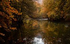 Deringöl (Explored, 28.02.16) (RKAMARI) Tags: autumn trees light lake nature water contrast forest reflections landscape nationalpark colours cities calm zen serene contemplative bolu yedigöller