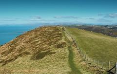 A coastal Path ... Wales Irish Sea Aberystwyth Hills Mountains Vista Nature холмы Walk Тропинка Footpath Countryside (Linandara) Tags: mountains nature wales countryside path walk hills aberystwyth vista footpath irishsea холмы тропинка