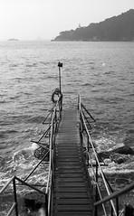 Bridge (dupdupdee) Tags: nikonfm2 nikkor50mmf14d iso25 kodakpanchromaticseparationfilm2238