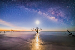 edisto island milky way (sparkyloe) Tags: ocean blue light sky sun moon beach water sunrise reflections stars island photo nikon glow bluesky explore galaxy dreamy phantom cosmos boneyard clearsky dreamscape edistoisland milkyway 14mm nightimage explored nikond750