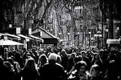 Las Ramblas Barcelona (Jelena. T) Tags: barcelona street people blackandwhite espaa spain noir moody crowd catalonia catalunya lasramblas