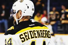 2/18/2016 (christina mccullough) Tags: hockey nhl bruins bostonbruins dennisseidenberg bridgestonearena