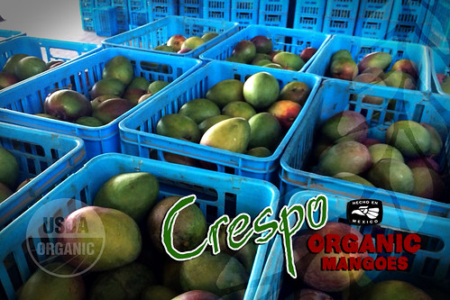 "Crespo_Branded_Packing_07 • <a style=""font-size:0.8em;"" href=""http://www.flickr.com/photos/139081453@N03/25231656544/"" target=""_blank"">View on Flickr</a>"