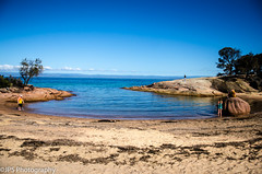 Honeymoon Bay (JPS Photography1) Tags: ocean sea nature water landscape coast sand nikon rocks surf waves australia land tasmania inlet scape sescape d7000