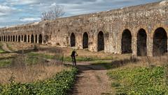Parco degli Acquedotti 2 - Roma (bervaz) Tags: italy rome roma arquitectura italia acueducto ciclista viaducto 2470mm imperioromano sonyvariotessartfe2470mmf4zaoss ilce7r2