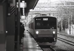 (Yukijiro.) Tags: blackwhite minolta jr  135film  8700i kodaktryx400