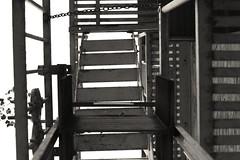 Fire Escape (powersmatthew17) Tags: blackandwhite bw monochrome sepia stairs outside outdoors escape fireescape ladder sepiatone escapeladder