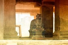 Pataleshwar_Caves_Pune-013 (Mrigank Gupta) Tags: heritage rock canon caves maharashtra nandi shiva pune nagar basalt shivaji rockcut maratha janglimaharaj pataleshwar mrigank rashtrakuta canon18135mm pataleshwarcaves panchaleshvara canon70d mrigankgupta mrigankphotography