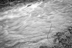 Der Fluss des Flusses (ceegee_bn) Tags: fuji eifel 23mm