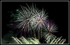 Fte Nationale du 14 Juillet  Strasbourg (Francis =Photography=) Tags: sky france night canon fire noir nightshot fireworks strasbourg alsace poudre couleur 14juillet feuxdartifice pyrotechnics nationalholiday combustion 2015 ftenationale 600d pyrotechnie bordure pyrotechnique