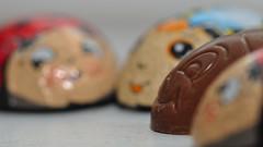 anders sein (nirak68) Tags: deutschland eyes bee ladybird augen lbeck biene marienkfer eingepackt ausgepackt macromondays schokoladenkfer andersalsdieanderen 115366 anderssein schleswigholsteinkreisfreiehansestadtlbeck schleswigholsteinkreisfreie c2016karinslinsede chocolatbugs otherastheothers