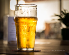 Day 112- Theology on Tap! (Wishard of Oz) Tags: beer theology day112 grayton project365 2016yip 366the2016edition 366in2016 21apr16 30343288