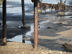 Coal legs (Nekoglyph) Tags: black seaweed beach wet reflections pier seaside sand legs yorkshire cleveland saltburn seacoal