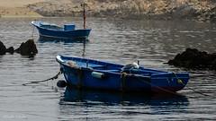 DSC_3501 (allabar8769) Tags: mar agua asturias barcas gaviota cudillero reflejos