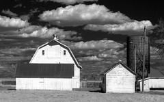 the zimmerman barn - IR (eDDie_TK) Tags: rural ir colorado weld farming barns co infrared farms rurallife ruralliving weldcounty whitebarns weldcountyco