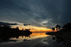 Atardecer en el Paran (augustoarg78) Tags: sunset argentina rio atardecer palmeras spiritofphotography