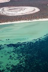 Shark Bay - 5310