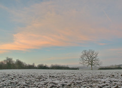 DSC_0102.jpg (Peter Connell) Tags: england sky mist weather europe view wiltshire fogmist staverton aftersunrise ruralcountryside