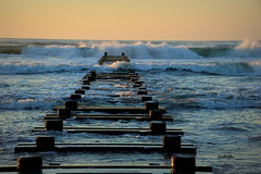the morning tide's coming in (judecat (getting back to nature)) Tags: ocean nature newjersey waves pilings wildwood