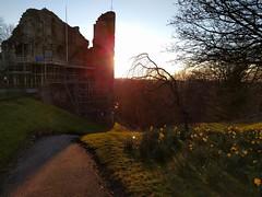 Knaresborough Castle Sunset (deadmanjones) Tags: sunset daffodil scaffold knaresborough knaresboroughcastle