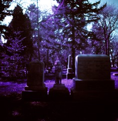 """I miss you,"" he admitted. (liquidnight) Tags: film cemetery graveyard analog mediumformat portland death lomo lomography purple toycamera surreal mementomori pdx dreamy analogue tombstones pnw dreamscape mortality filmphotography lonefircemetery lomochrome lomochromepurple lomochromepurplexr100400"