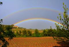 Arc de Sant Mart, Santa Maria de Foix, Alt Peneds. (Angela Llop) Tags: rainbow spain via wine catalonia penedes santamariadefoix