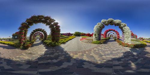 Dubai Miracle Garden @ 360°