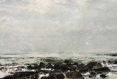 North sea (borisbschulz2009) Tags: waddeneiland noordzee zee northsea texel